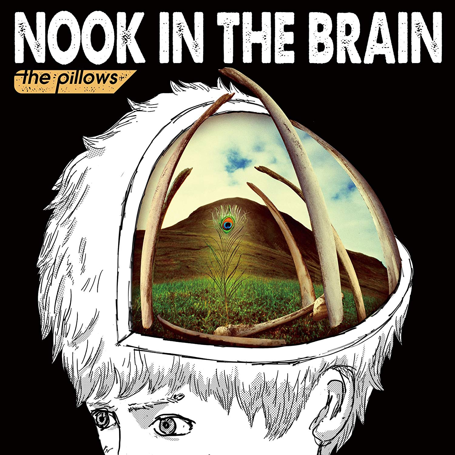 thepillows NOOK IN THE BRAIN tour FINALに行きました【大長編】